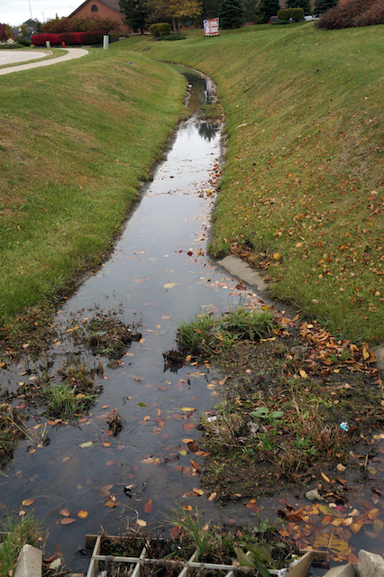 Everything to Know About French Drains and Why You Should Install One